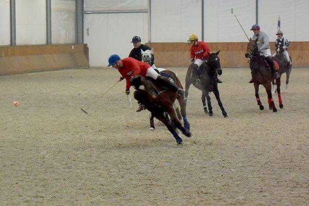 źródło: profil fb/Silesia Polo Club