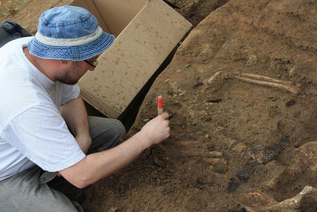 archeologowie